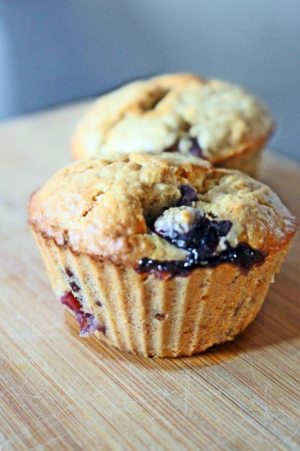 muffin saudavel de aveia e mirtilos sem gluten sem lactose joanabblIMG_2876